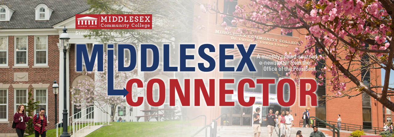 Image result for middlesex connector
